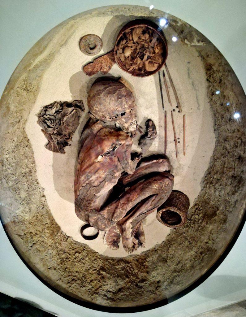 mummia predinastica museo egizio