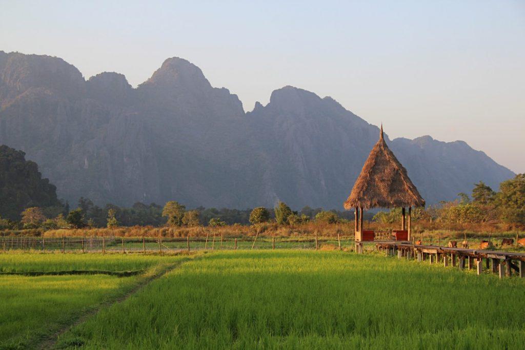 3 giorni a vang vieng, panorama sulle risaie nei pressi del Tara Villa