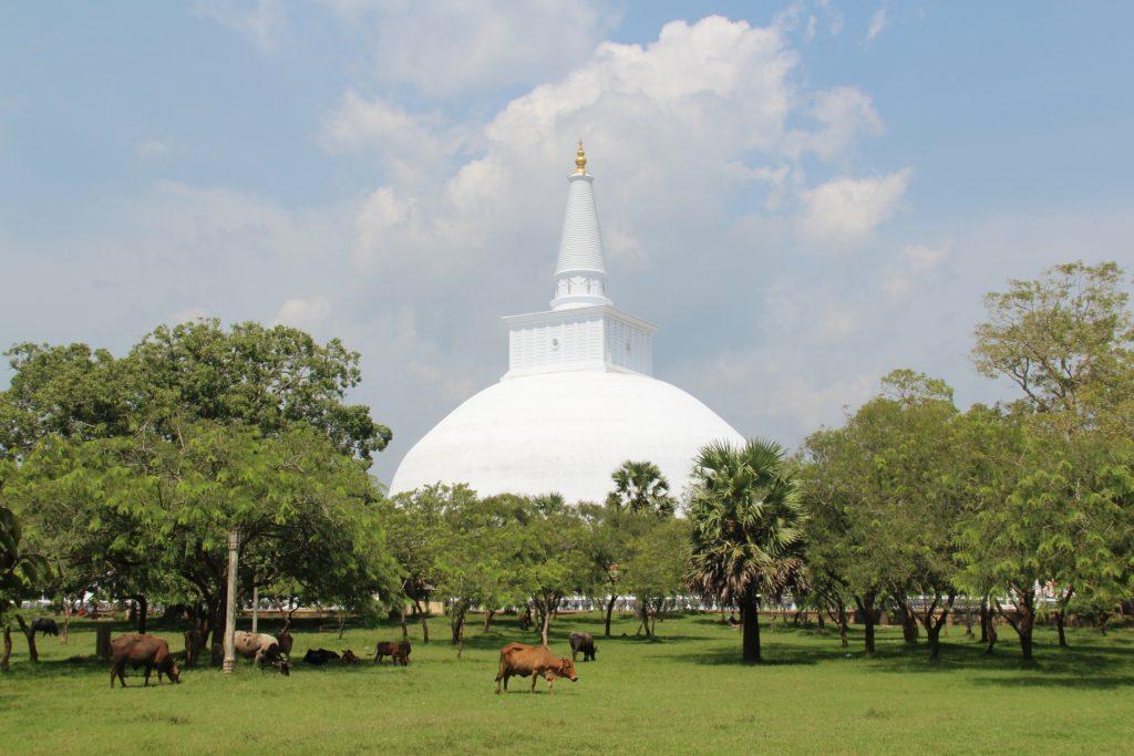 cosa fare in sri lanka: Anuradhapura. Stupa bianco gigante