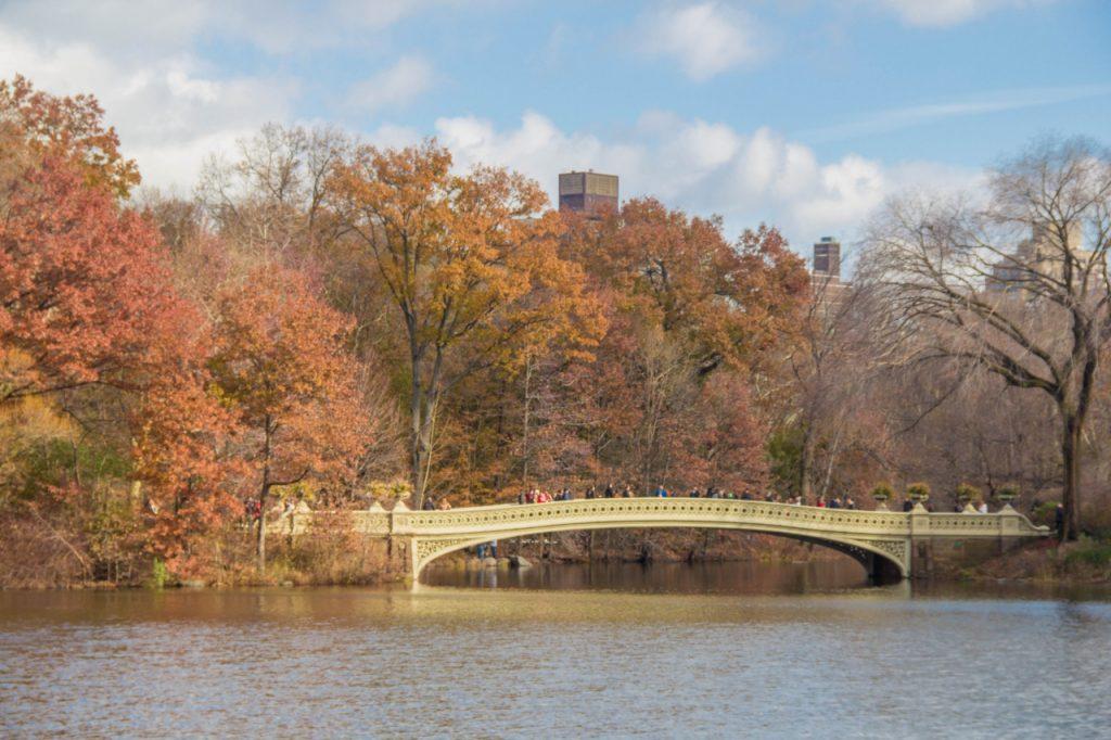 central park in autunno, ponte sul lago