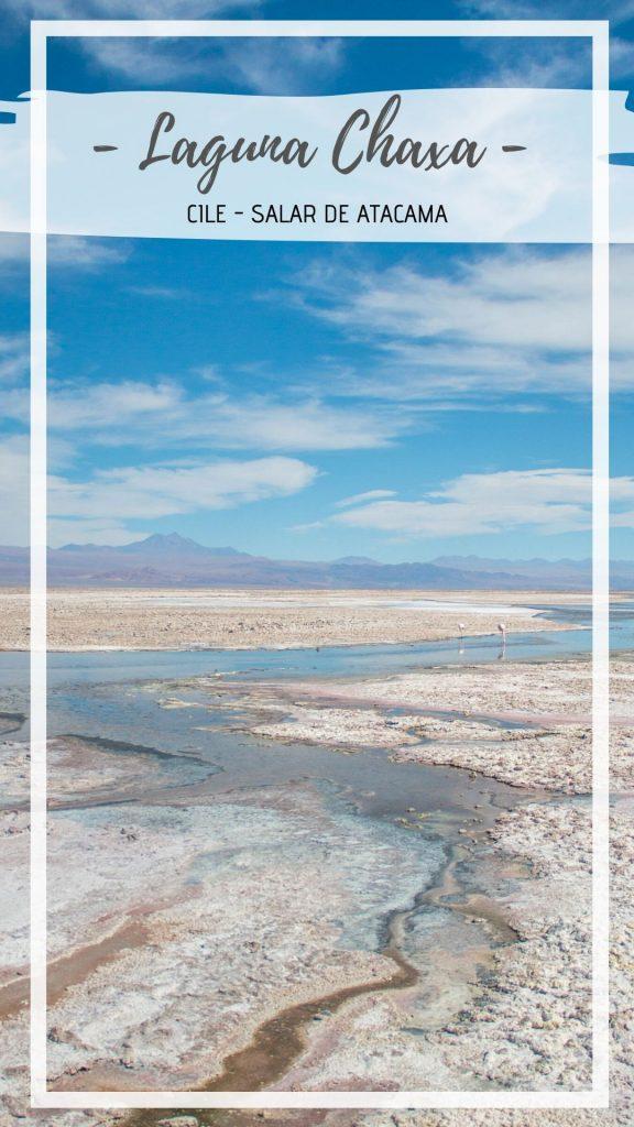 Laguna Chaxa, nel cuore del salar de Atacama. Sullo sfondo due fenicotteri, in fondo le Ande - free soul on the road, elisabetta frega travel blogger italiana